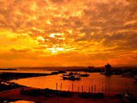 大津漁港・写真