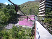 滝見橋・写真