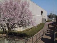 小山市立博物館・写真