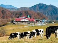 大笹牧場・写真