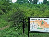 霧降高原ハイキングコース(大山コース)