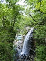 虹見の滝・写真