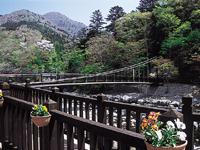 紅の吊橋・写真
