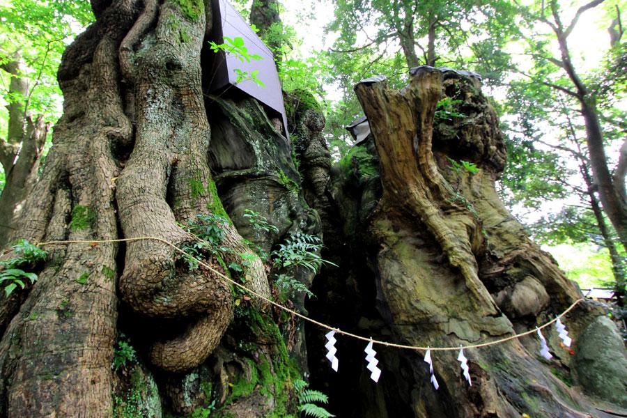 Kurumiya Shrine