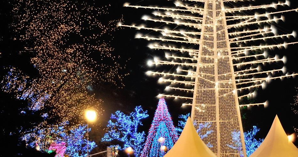 Sparkling Sapporo