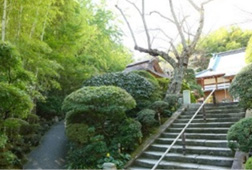Hokokuji shrine