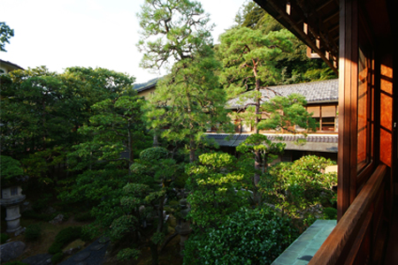 View of the garden from the Matsu room