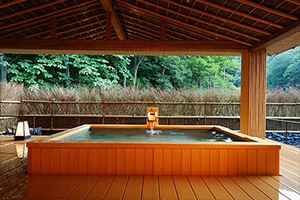 Private onsen spa