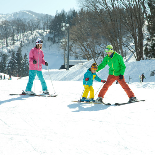 NASPA滑雪花園
