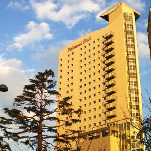 尊貴武藏小杉里士滿酒店