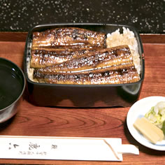 Unaju (eel rice bowl) at Shikaroku