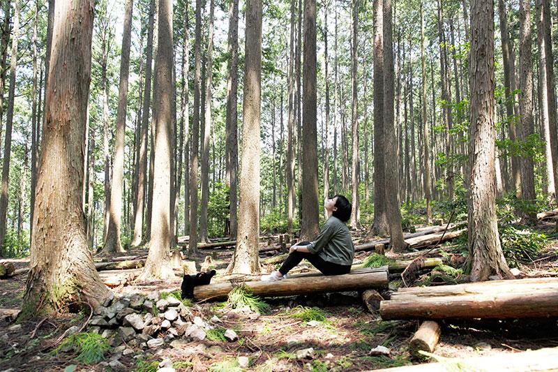 熊野古道森のベッド