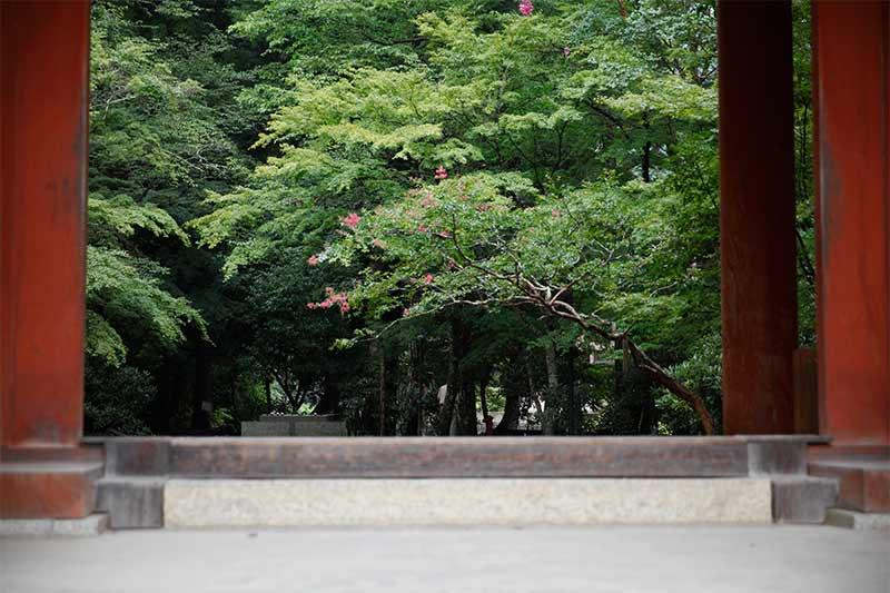 室生寺の仁王門
