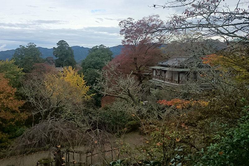 竹林院群芳園の庭