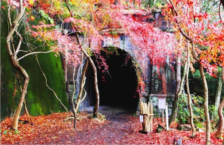 日本3大廃線トンネル群・愛岐トンネル群