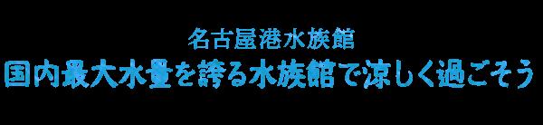 名古屋港水族館「国内最大水量を誇る水族館で涼しく過ごそう」