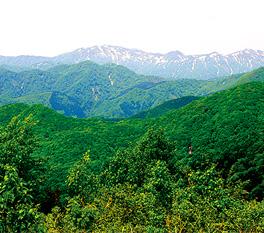 二ツ森コース