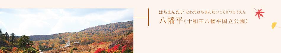 八幡平(十和田八幡平国立公園)