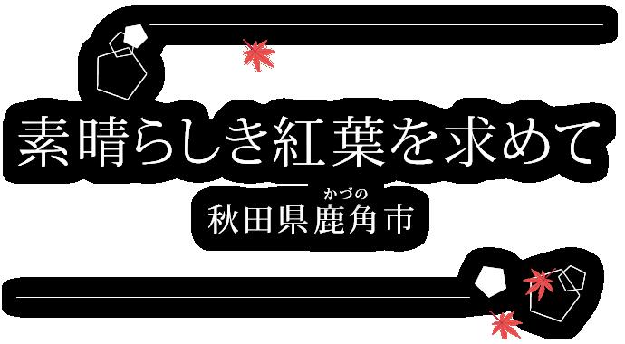 素晴らしき紅葉を求めて~秋田県鹿角市~