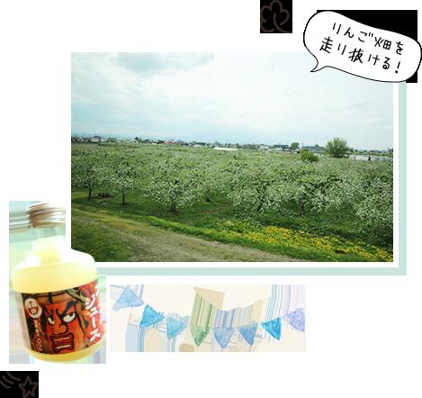 りんご畑を走り抜ける!
