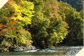 紅葉と清流の恵みを楽しめる赤石渓流