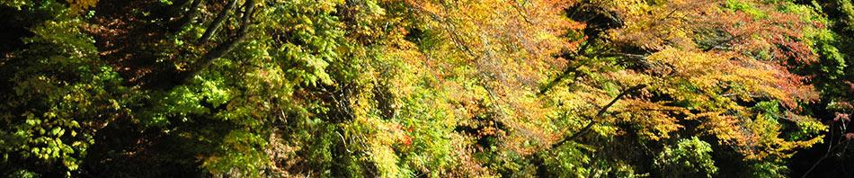 青森県・鰺ヶ沢町 秋薫る自然めぐり