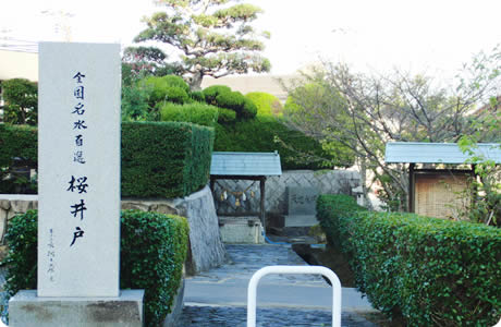 桜井戸(岩国市)