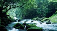日本一を探す旅