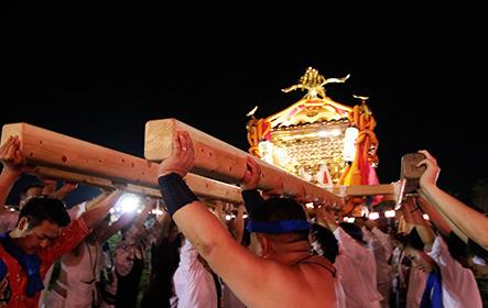 鴨川合同祭