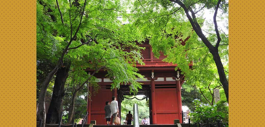 本土寺(松戸市)