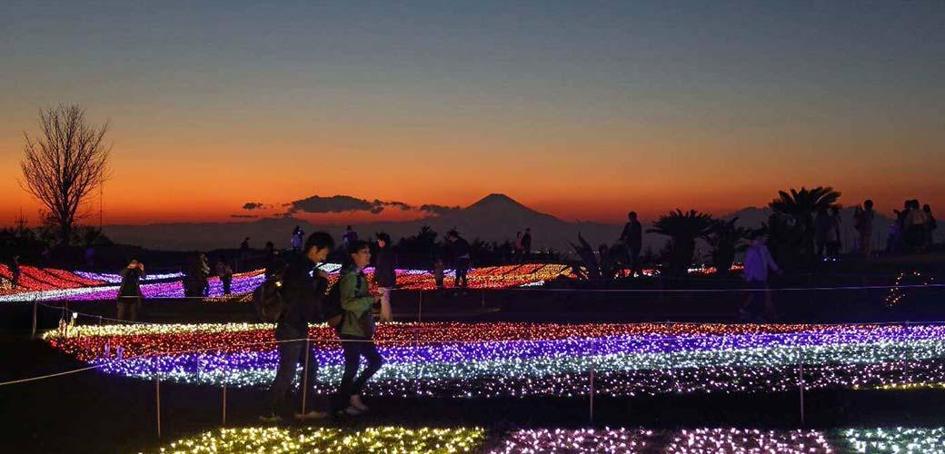 マザー牧場(富津市)