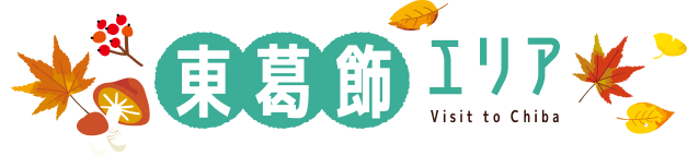 東葛飾エリア