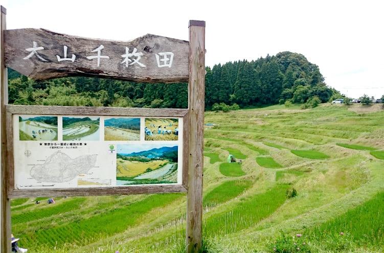 のどかな田園風景が広がる「大山千枚田」