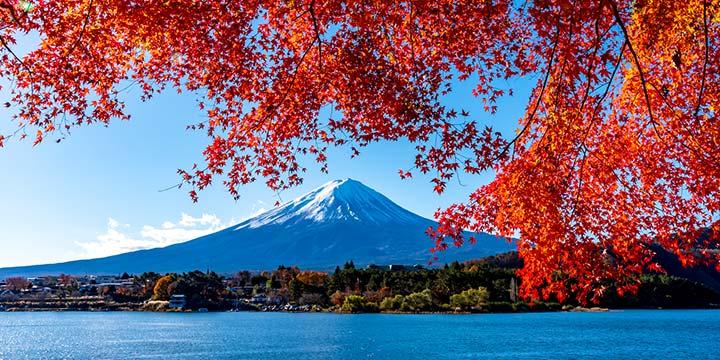 旅で日本を元気に全国の旅行を応援するお得情報