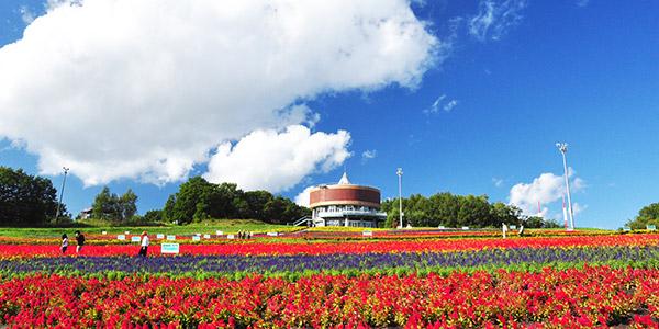 【フラワーガーデン「はな・てんと」】斜面いっぱいに色とりどりの花が咲き誇る丘。