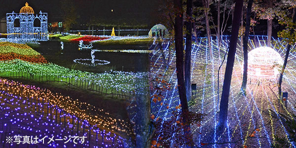 Winter Illumination 光の森のページェント 「HEAVEN and EARTH」(大町市・松川村・安曇野市)
