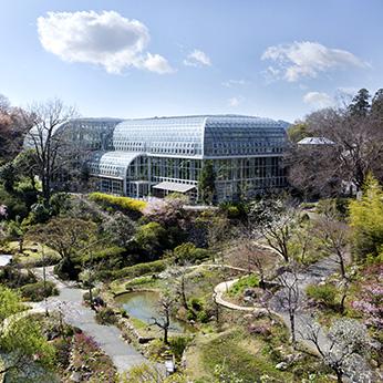 牧野植物園【高知県】