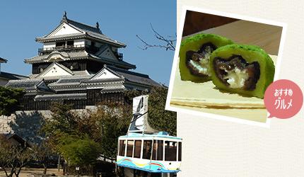 松山城とロープウェイ