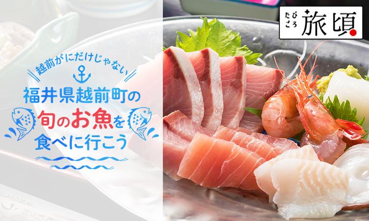 福井県越前町の旬のお魚を食べに行こう
