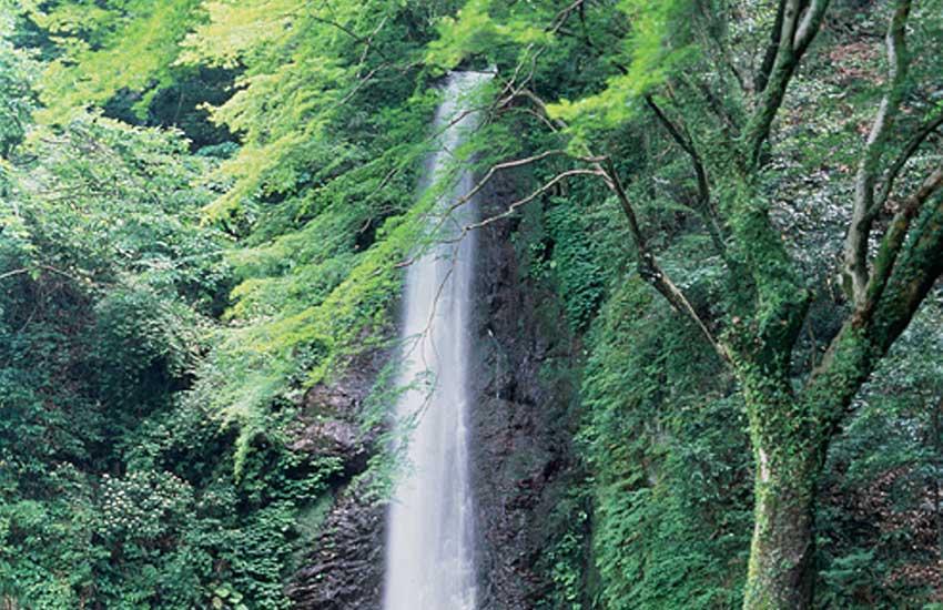 養老の滝+養老改元1300年祭
