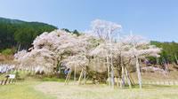 写真 岐阜は桜の名所が沢山♪春の祭りやスイーツ、新名所スポットも!