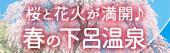 桜も花火も満開!春の下呂温泉
