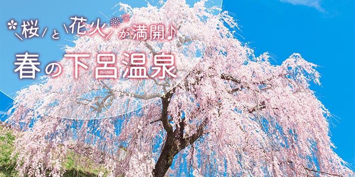 桜と花火が満開♪春の下呂温泉