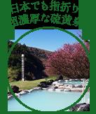 日本でも指折りの超濃厚な硫黄泉!