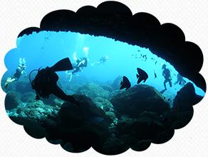 ダイバーに人気の海底アーチ