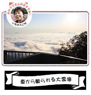 車から観られる大雲海