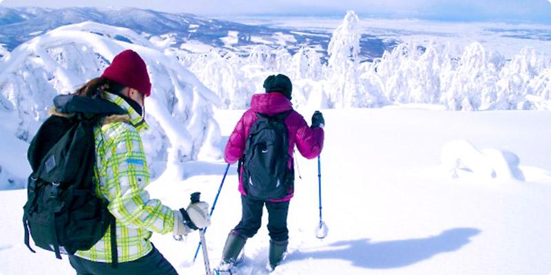 原生林を行くスノーシューハイクの霧氷