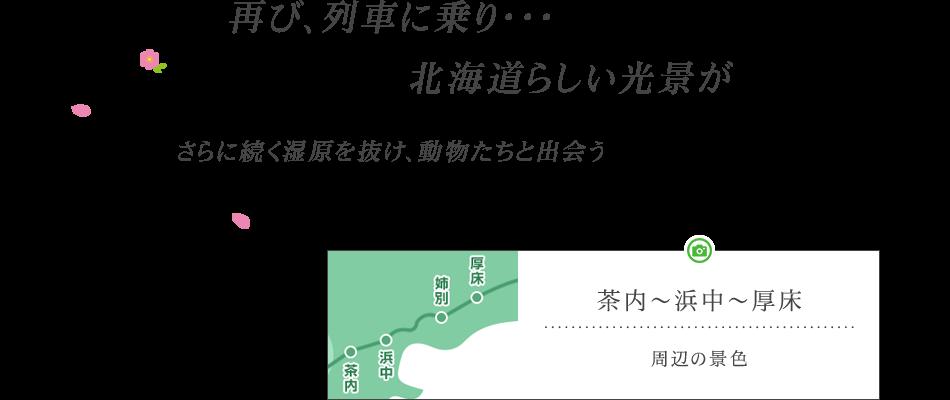 再び、列車に乗り・・・北海道らしい光景が