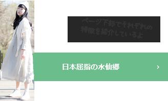 日本屈指の水仙郷