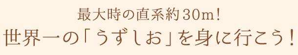 『古事記』の冒頭を飾る「国うみの島・淡路」~古代国家を支えた海人(あま)の営み~